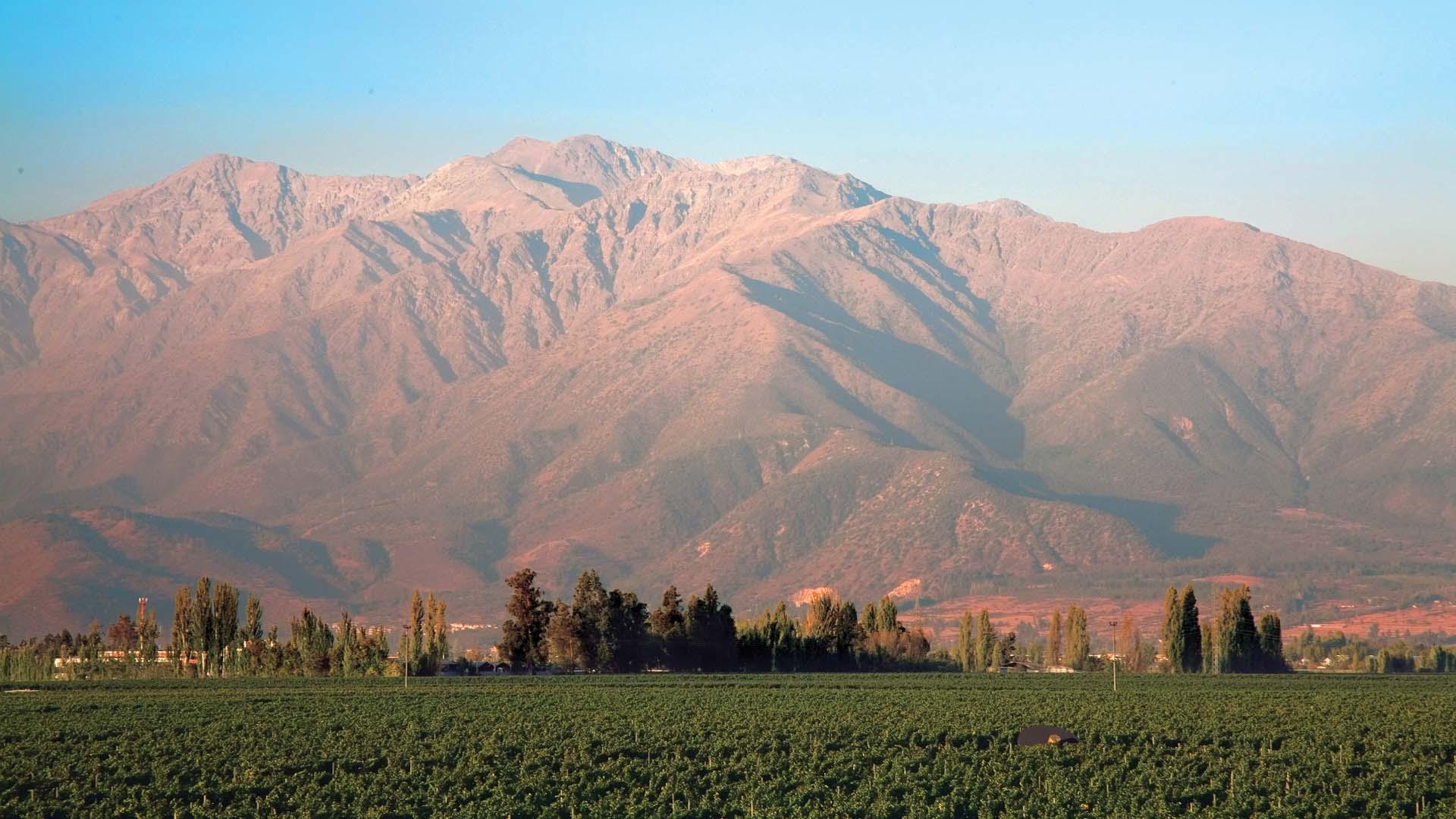 Vin-a-y-Cordillera-3