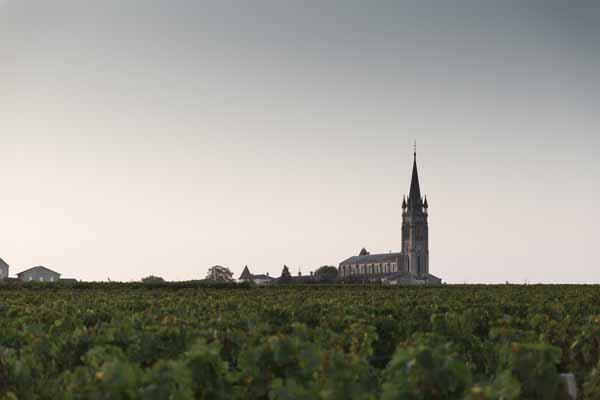 Chateau-Clinet-Weinberge-Pomerol