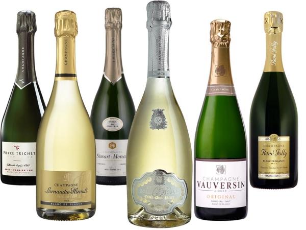 Blanc de Blancs Champagner 6er-Paket
