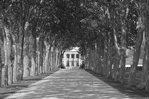 chateau-margaux-copyright-francois-bernadet