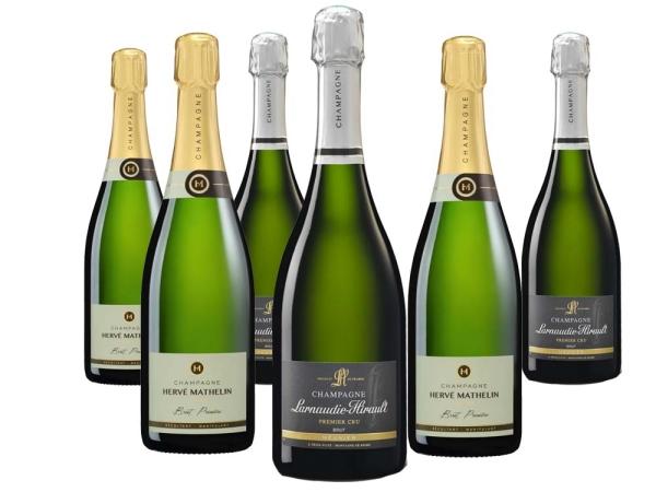 6er Probierpaket Pinot Meunier Champagner