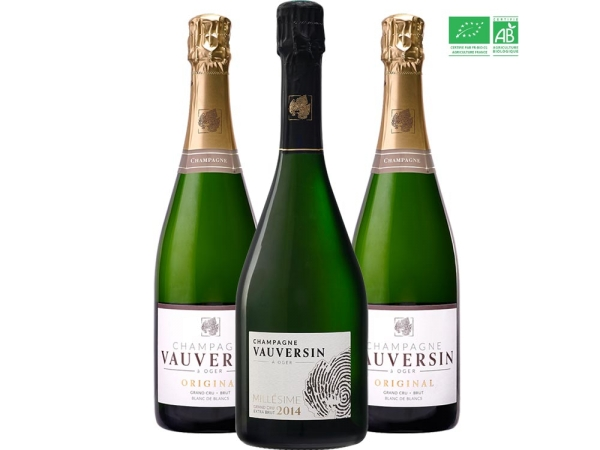 BIO Champagner Grand Cru 3er-Paket